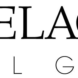 c1a24a8a40f8e Belgoptic - Marc Delagrange - Optical Gallery